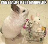 Can i talk to the manager memes