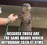 Withdraw cash memes