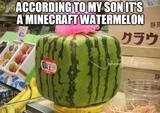 Watermelon funny memes