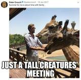 Tall creature memes