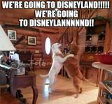 We are going to disneyland memes